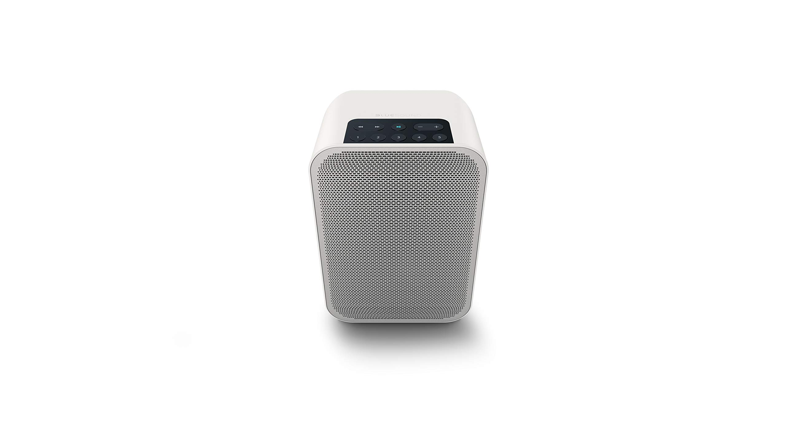 Bluesound Pulse Flex 2i Portable Wireless Multi-Room Smart Speaker with Bluetooth - White - Works with Alexa and Siri