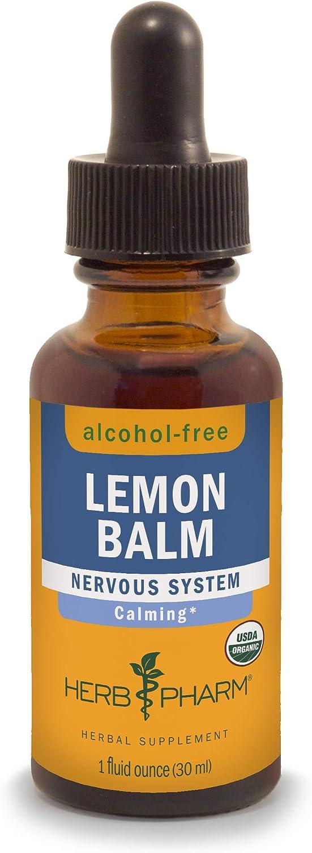 Lemon balm(toronjil)