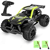 MISSLFJY Remote Control Car High Speed RC Truck Hobby Racing Car Buggy Vehicle 2.4 GHZ 1:22 Scale RC Cars, Great Toy…