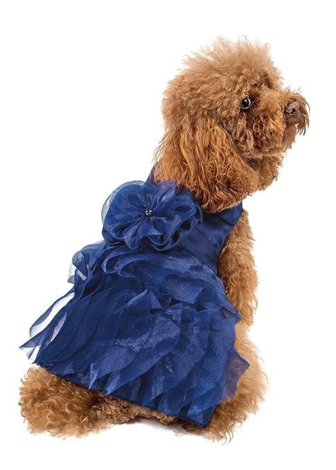 Trends Disfraz para Perros de tamaño pequeño a Mediano, fácil de ...
