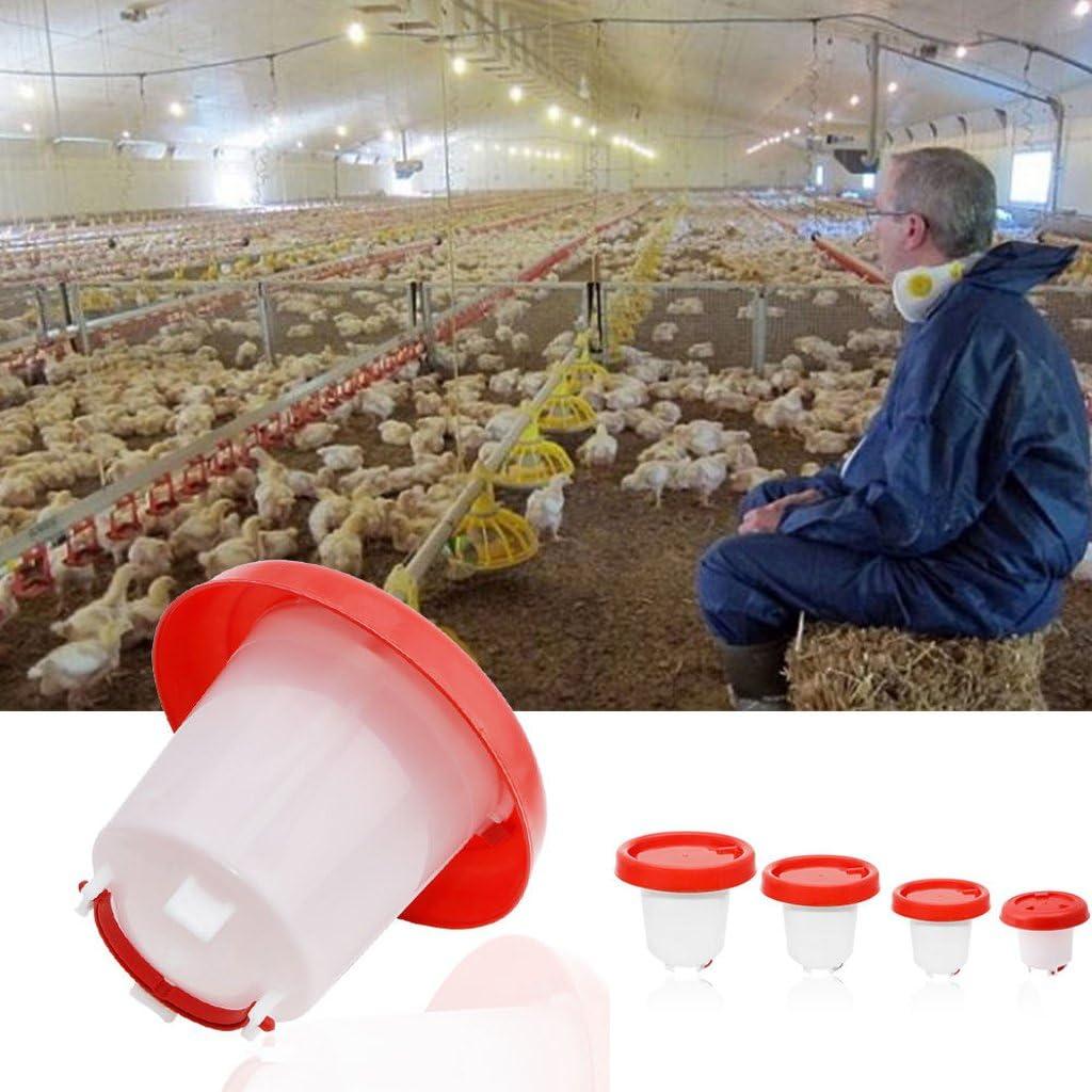 Lifet 2.5L Chook Chicken Waterer Vogeltrinker Voliere Automatic Feeder /& 6//3//1.5L 1PC