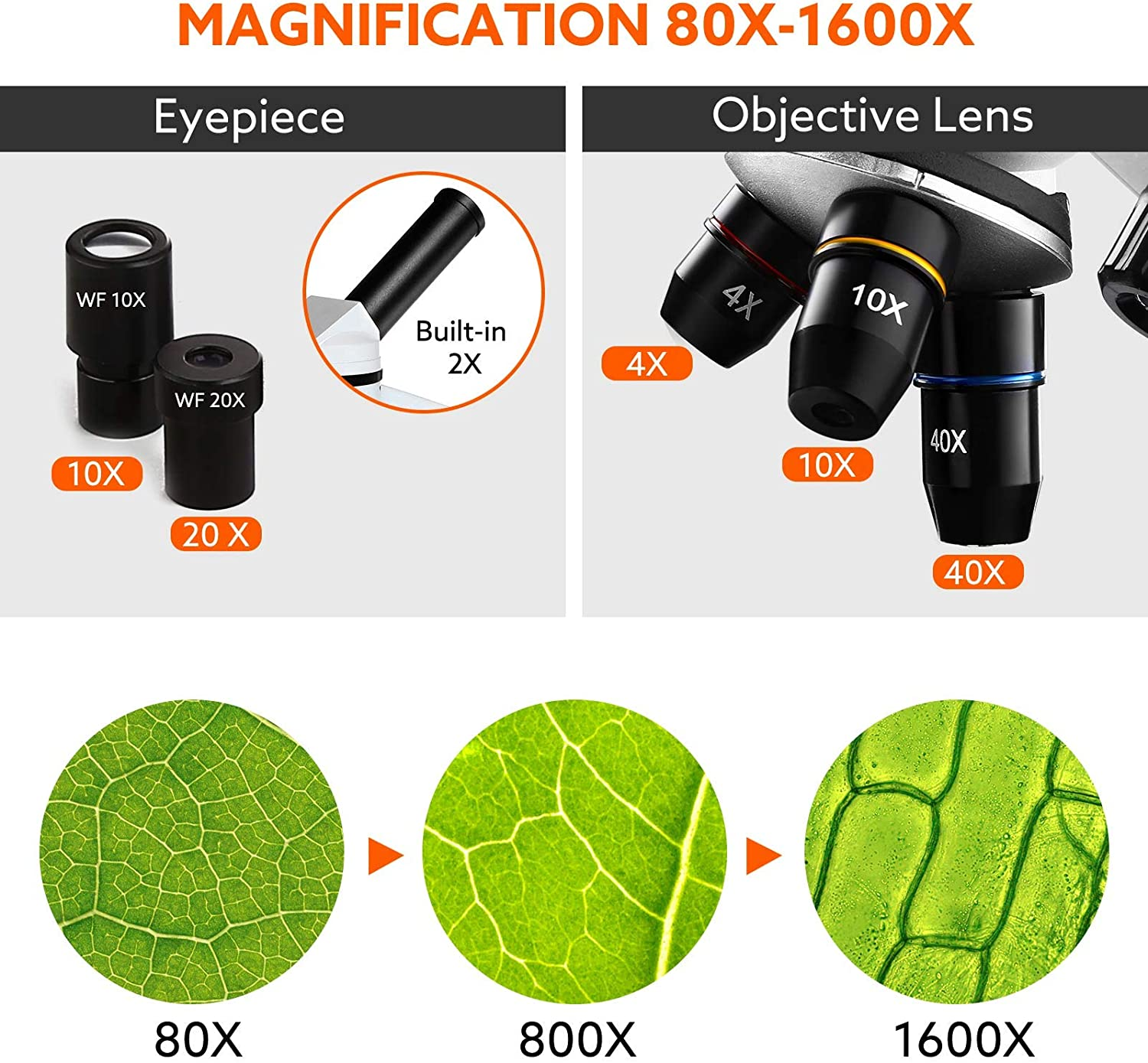 LED Lights Built-in Relay Lens Binocular Microscopes for Students Slides Elikliv 40X-1600X Biological Compound Microscope with 2 Oculars and 3 Objectives