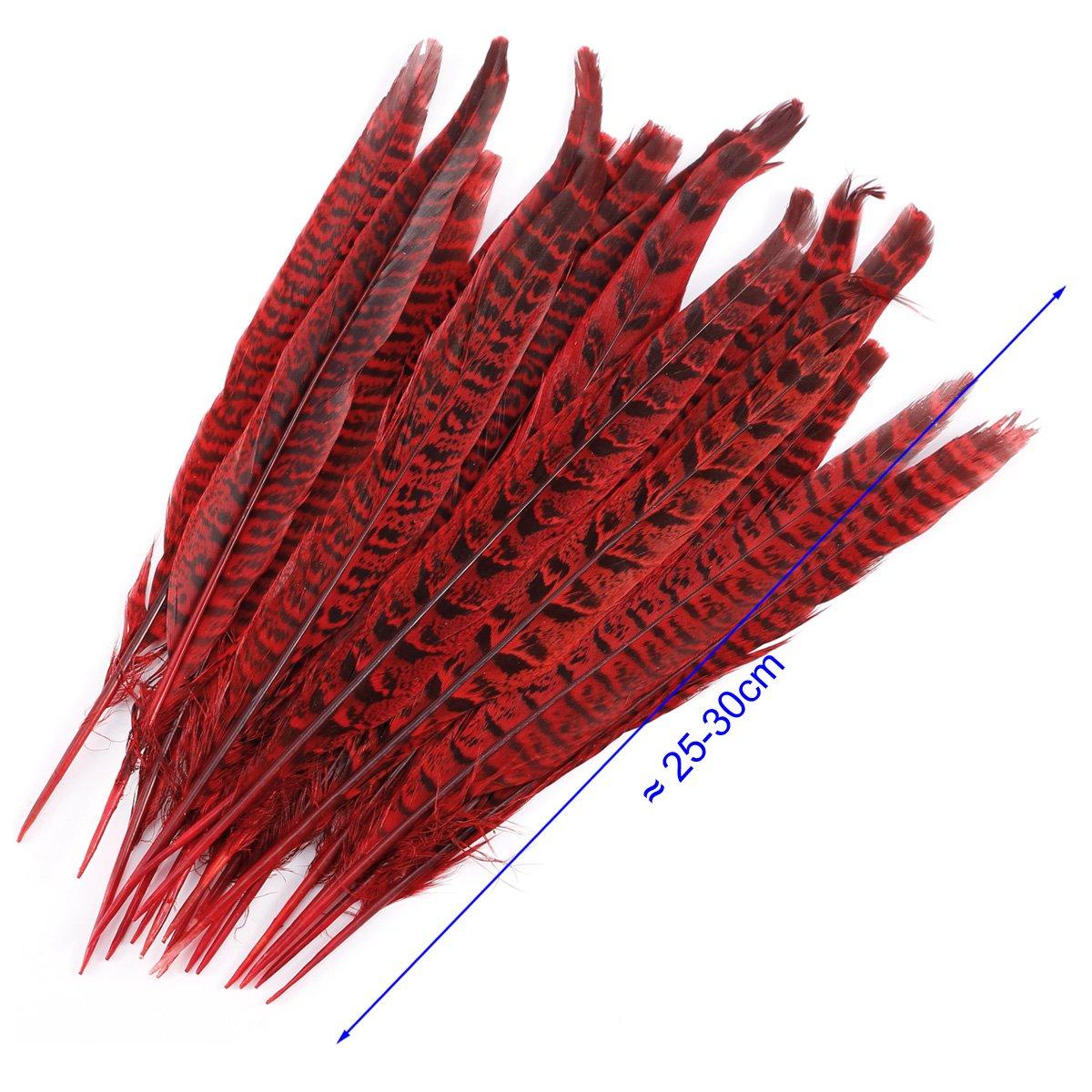 Rouge 20pcs Plumes de Faisan Naturelles Artisanat DIY D/écoration de Chapeau Masque Spectacle Loisir Costume 25-30cm