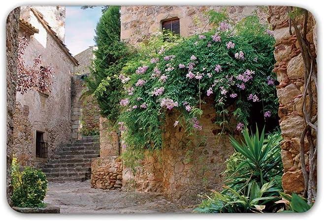 Alfombrilla Antideslizante para paisajes, Flores de jardín de Verano Piedras de caléndula Antigua casa Antigua en España Lámina Felpudo para Puerta de Entrada Interior: Amazon.es: Hogar