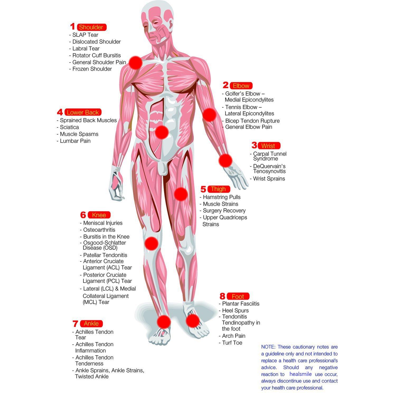 Perfect Bursa Knee Anatomy Vignette - Human Anatomy Images ...