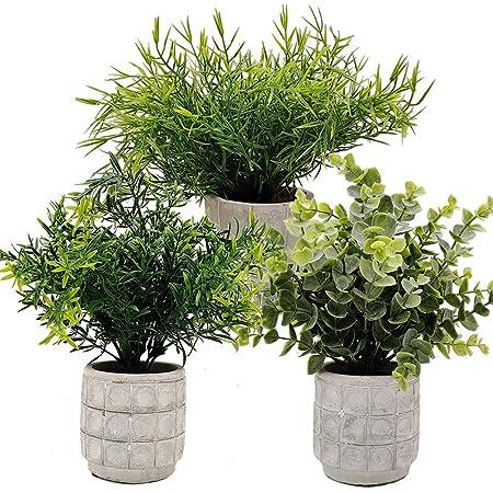 Aisamco 3 Piezas Mini Plantas en macetas Eucalipto Flocado ...