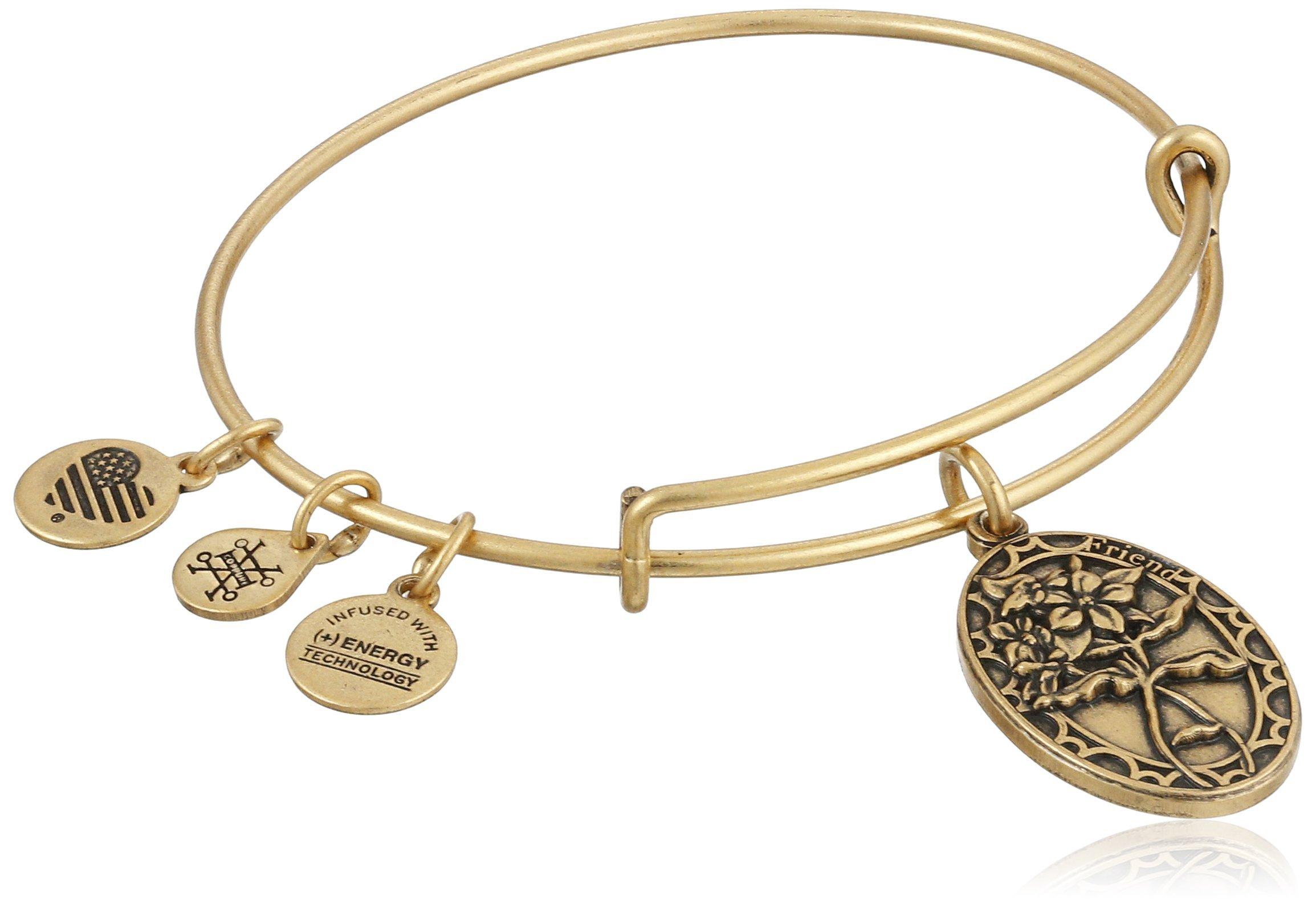 Alex and Ani Because I love you, Friend II Expandable Rafaelian Gold-Tone Bracelet