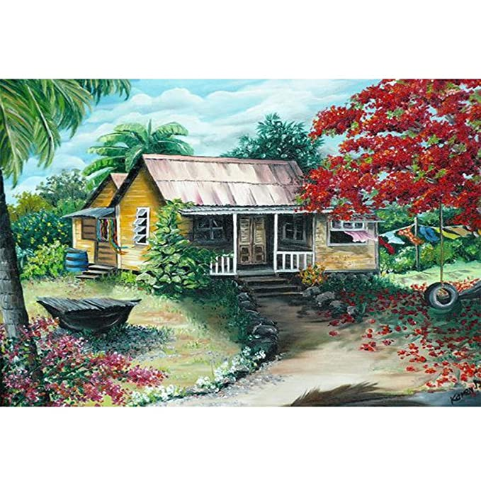 Amazon.com: 5D Diamond Painting Full Drill by Number Kits ...