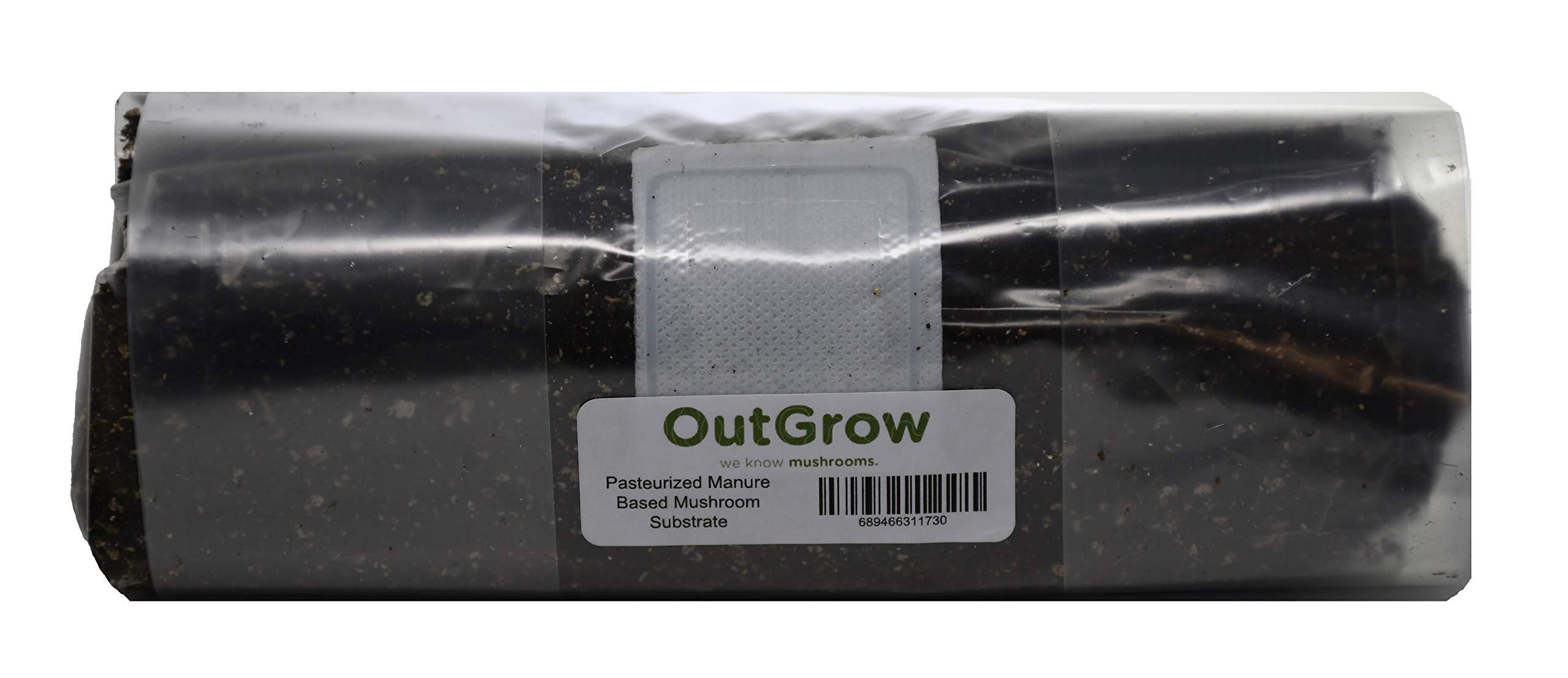 Pasteurized Manure Based Mushroom Substrate in Mushroom Grow Bag