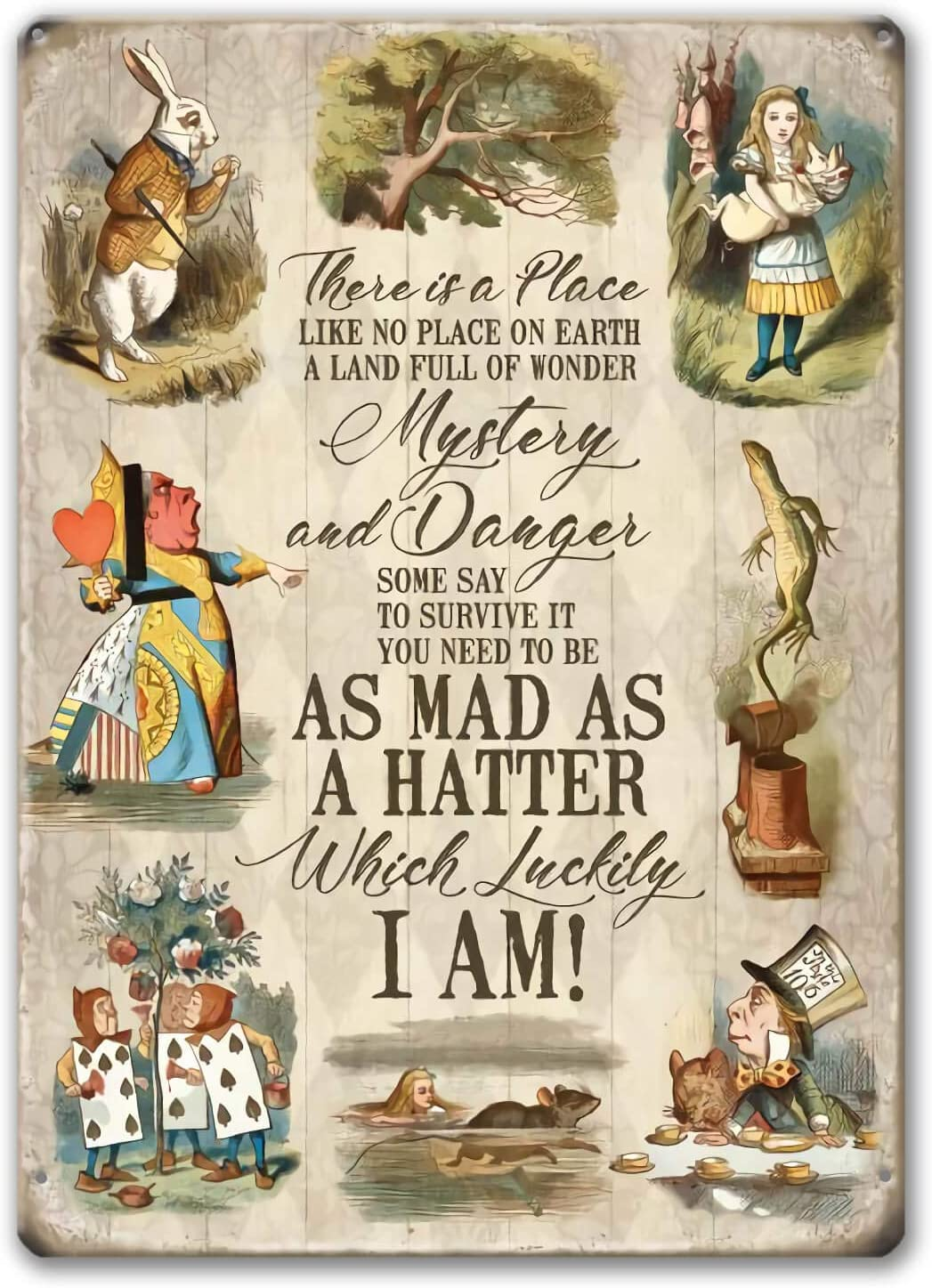 Agedsign Alice in Wonderland Poster, Vintage Metal Tin Sign There is a Place Quotes Decor Gifts for Girls Living Room Party Decorations 12 x 8 inches