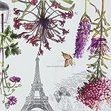 """Alink Paper Napkins Paris Eiffel Design Luncheon Party Napkins Serviettes, 20 Count, 13"""" x 13"""""""
