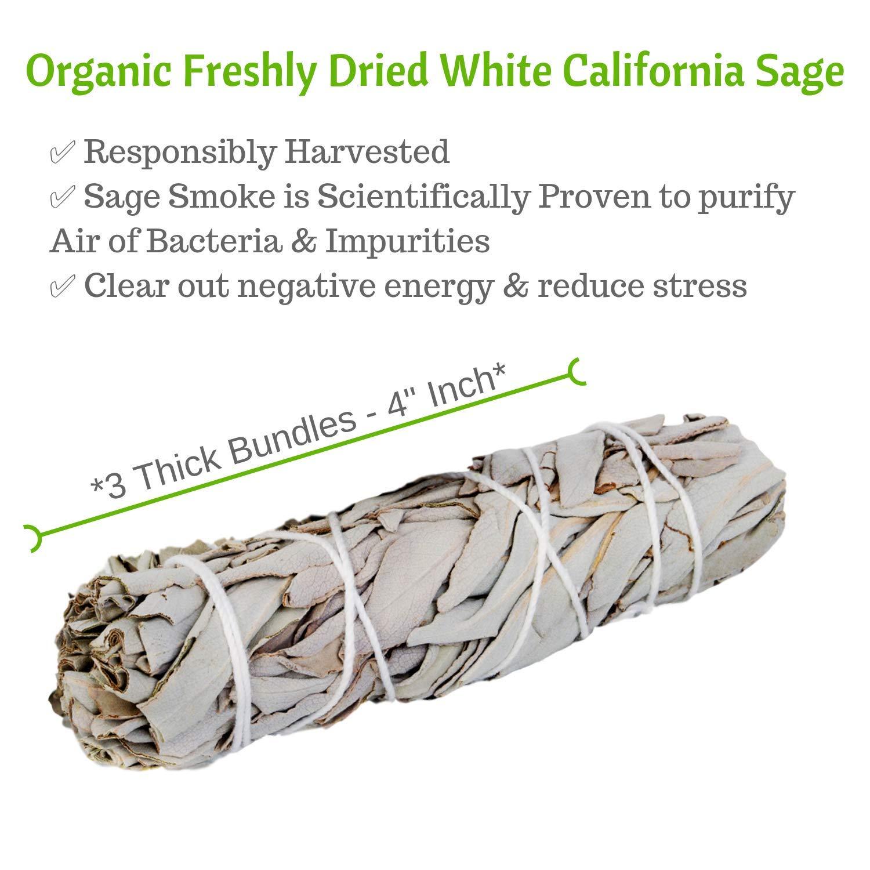 Sage Smudge Stick Set Premium Spiritual California White Sage Bundles, 3 - 4'' Smudging Sticks with Natural Storage Bag, BONUS Chakra Stones Diffuser Bracelet (Unisex) & Positive Vibes Charitable by Worldly Finds (Image #4)