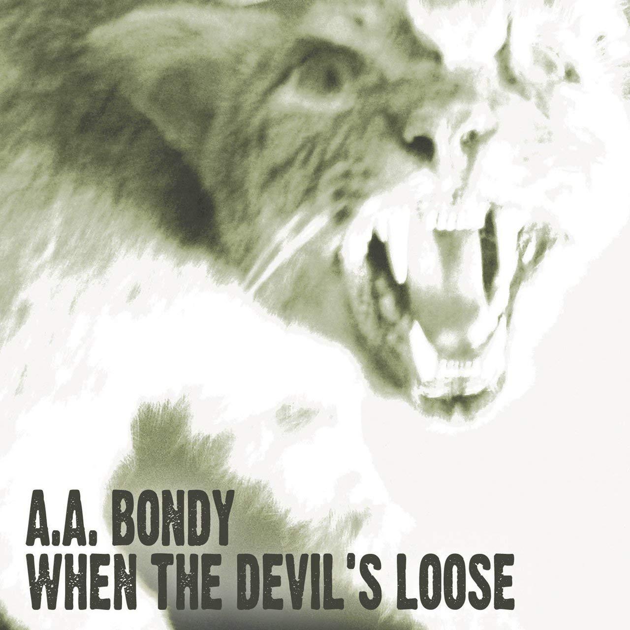 When the Devils Loose : A.A. Bondy: Amazon.es: Música