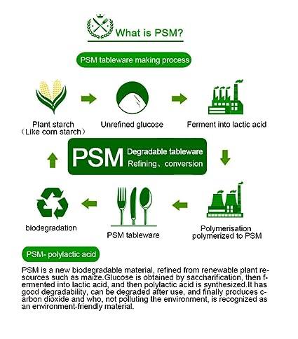 Green Breathe juego de cubiertos desechables compostables {300 ...