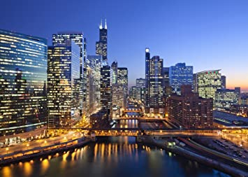 Image result for images of chicago skyline