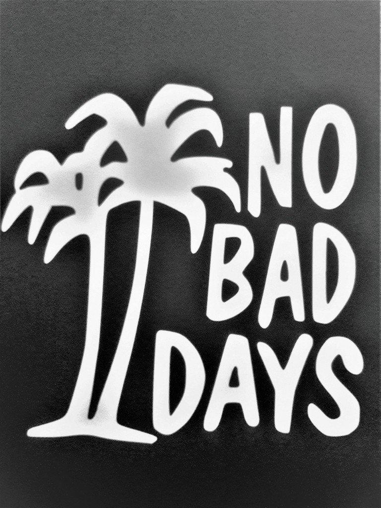 Chase Grace Studio No Bad Days Palm Trees Islands Vinyl Decal Sticker|WHITE|Cars Trucks SUV Boats Canoe Kayak Laptops Wall Art|5.5 X 5.5|CGS323