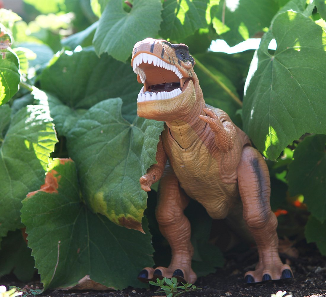 Warp Gadgets - Remote Control LED Brown T-Rex Dinosaur 19 Inches - Walking Dancing, Roaring, Light Up RC Toy by Warp Gadgets (Image #8)