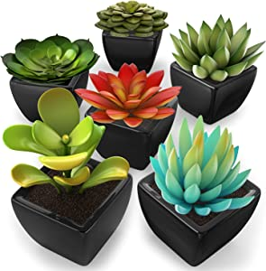 kdelicate Artificial Succulent Assorted Decorative Faux Succulent Fake Plants with Black Ceramic Pots -Pack of 6