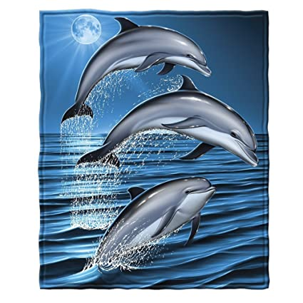 Amazon Dolphins Fleece Throw Blanket Home Kitchen Enchanting Miami Dolphins Plush Fleece Throw Blanket
