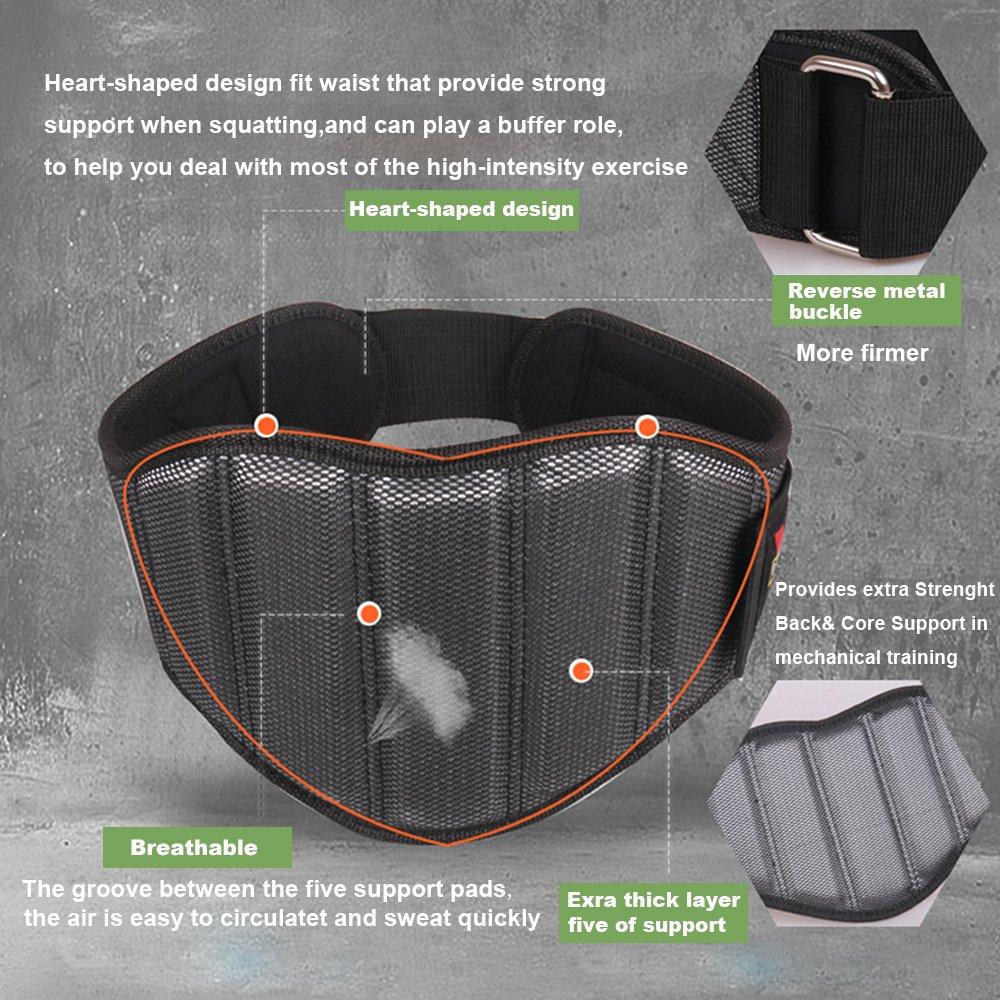 EnergeticSky Cintur/ón Acolchado para Levantamiento de Pesas,Cintur/ón de Entrenamiento para el Levantamiento de Pesas,Gimnasio,para Mayor Comodidad y protecci/ón.