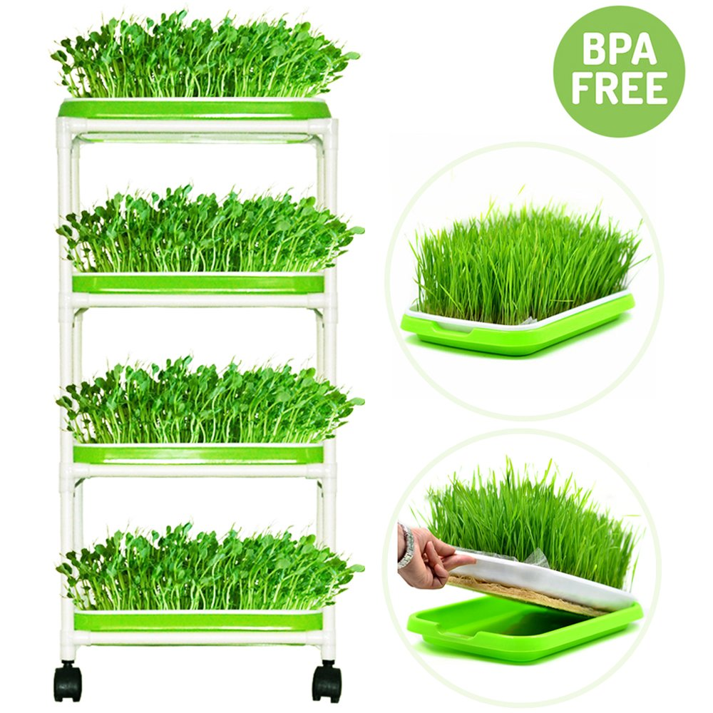 Seed Sprouter Trays with 4 Layers Shelf Soil-Free Healthy Wheatgrass Seeds Grower & Storage Trays for Garden Home by LeJoy Garden