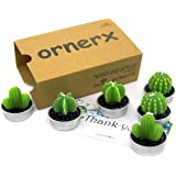 (Style 1) - Ornerx Decorative Cactus Candles Tea Light Candles 6 Pcs
