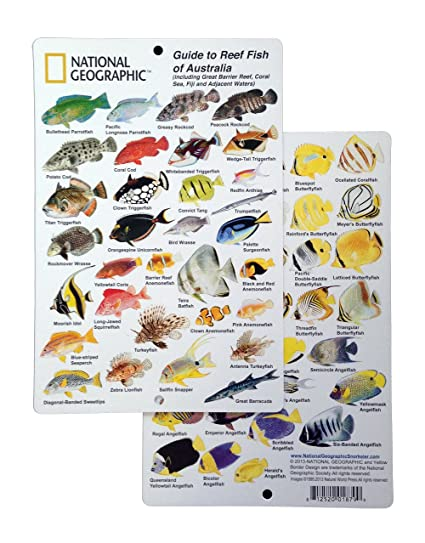 By Guide National 6 co Reef Outdoors 9 Id - To Australia Amazon In amp; Fish In Card Of uk Geographic Sports