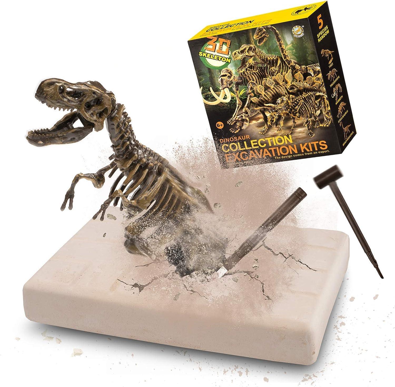 Amazon Com Vibirit Juego Realista Y Educativo De Excavación De Dinosaurios Para Niños Toys Games