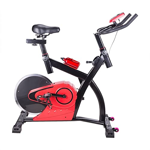 Pinty Upright Stationary Exercise Bike with LCD Screen Fitness Equipment for Indoor Cardio Workout Gym - Rear Wheel Style