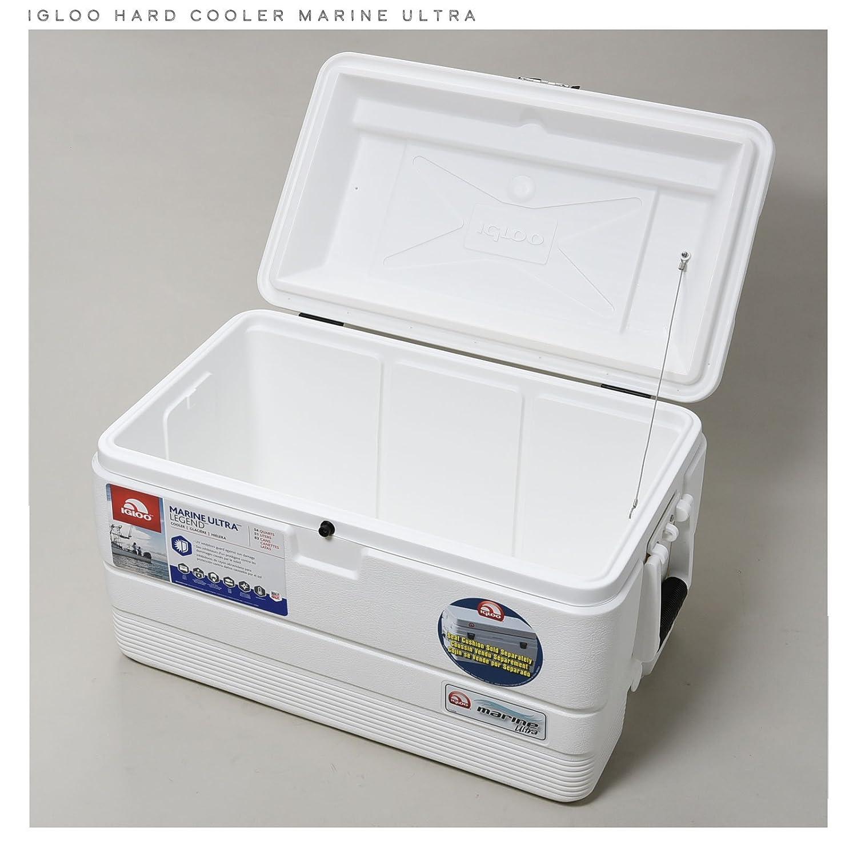 Igloo Cooler 18-44683 Nevera, Blanco, Talla Única: Amazon.es ...