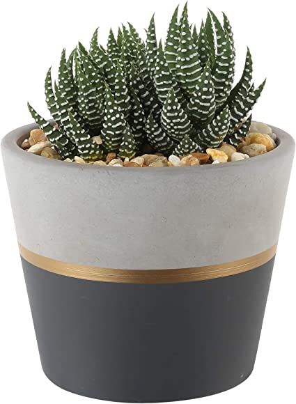 Mother/'s Day Gift Plant Gift Black and White Succulent Planter Small Plant Holder Native American Pattern Fabric Planter