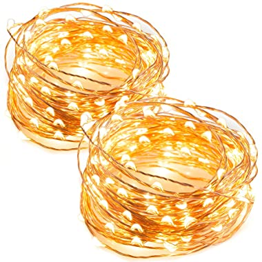 TaoTronics LED String Lights 33 ft with 100 LEDs, Waterproof Outdoor & Indoor Decorative Lights for Bedroom, Garden, Patio, Parties. UL588 and TUVus Approved ( Copper Wire Lights, Warm White )-2 Pack