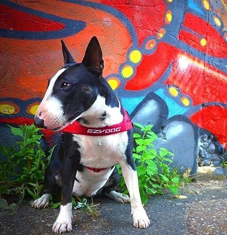 Perro reflectante ajustable perro arnés de ajuste rápido EzyDog de ...