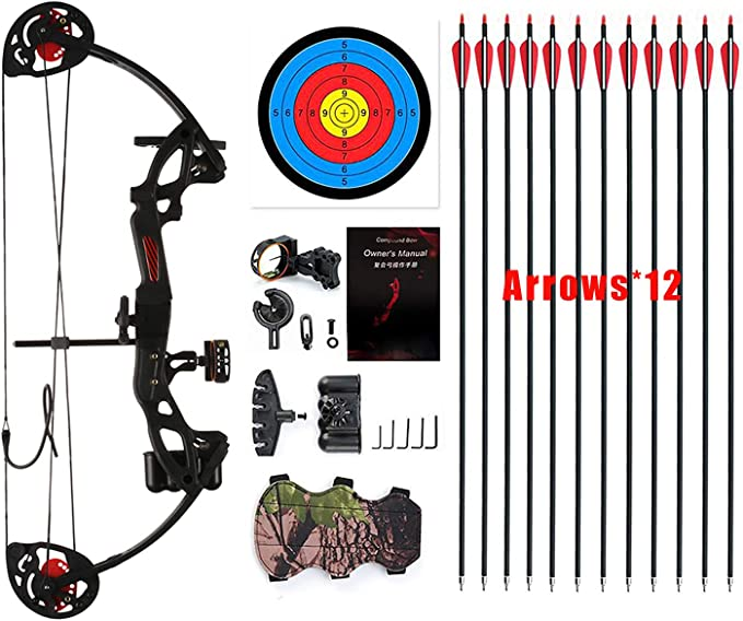 "PANDARUS Compound Bow Archery for Youth and Beginner, Right/Left Handed,19""-28"" Draw Length,15-29 Lbs Draw Weight, 260 fps, Package with Archery Hunting Equipment"