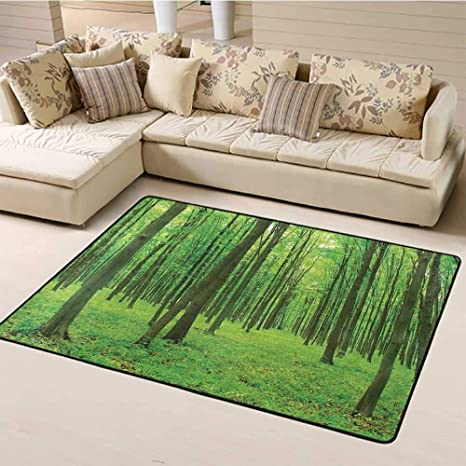 Indoor Modern Area Rugs Forest Bedroom Hallway Rugs Sun Illuminating The Green Forest In Springtime Fresh Air Landscape Picture Print Carpet For Home Decor Lime Green 6 6 X8 Kitchen Dining