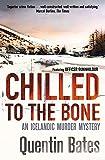 Chilled to the Bone (Gunnhildur Mystery)