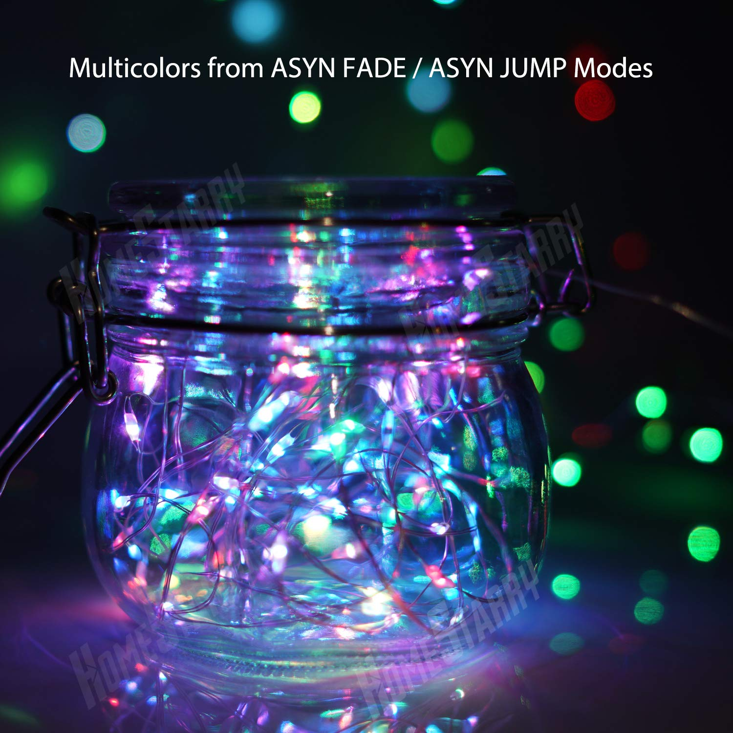 Homestarry LED Multi Color Fairy String Lights with Remote 6 AA Battery Powered Firefly 33 ft 100 LEDs Twinkle Lights for Bedroom Party Decoration Wedding,13 Colors Option HS-BSLMC-04