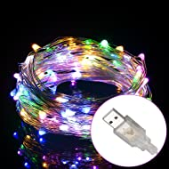 Excelvan 10m/33ft 100 LED String Lights Copper Wire LED Starry Light with Remote, Waterproof Dimmable Decorative Fairy Lights for Christmas, Patio, Garden and Party Holiday Decoration, Warm White