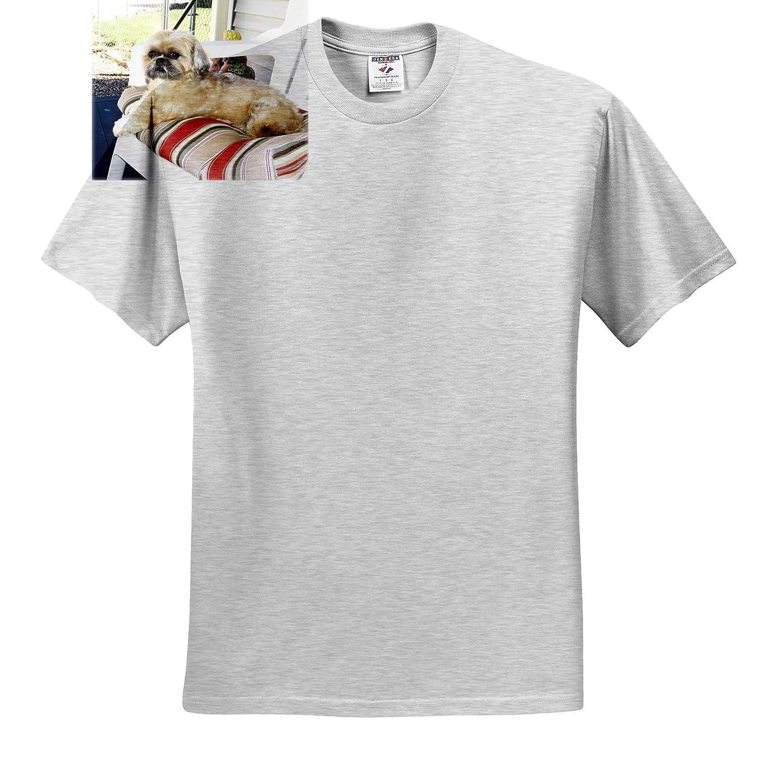 A cr/ème Colored Shih Tzu Doggie Sitting Outside on a Cushion 3dRose Jos Fauxtographee Shih Tzu Beauty T-Shirts