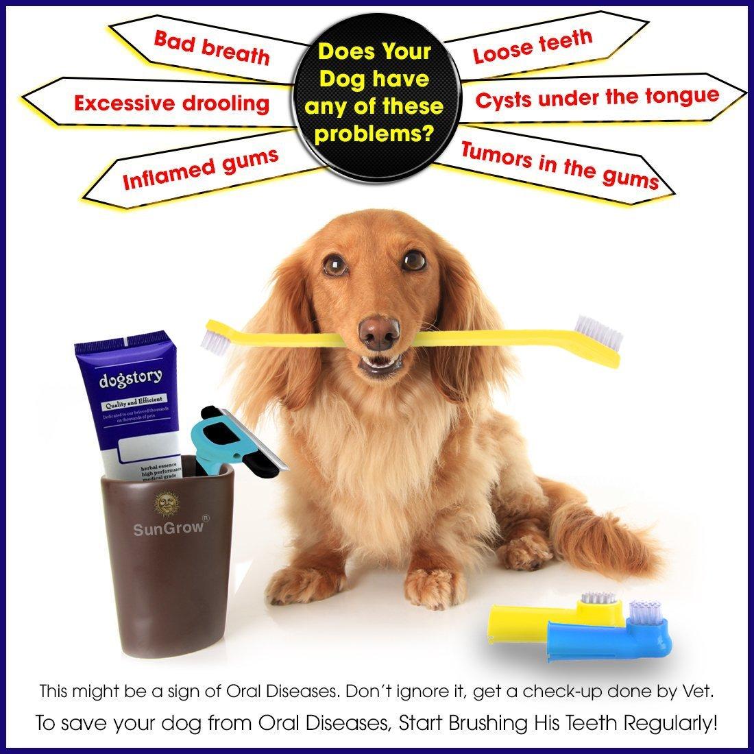 3 pcs Dog Toothbrush Set -- Dual-headed brush for better dental care - 2 Bonus Finger Brushes included - Removes plaque, freshens dog's breath - Vet & Pet Groomer Recommended - Use with Dog Toothpaste
