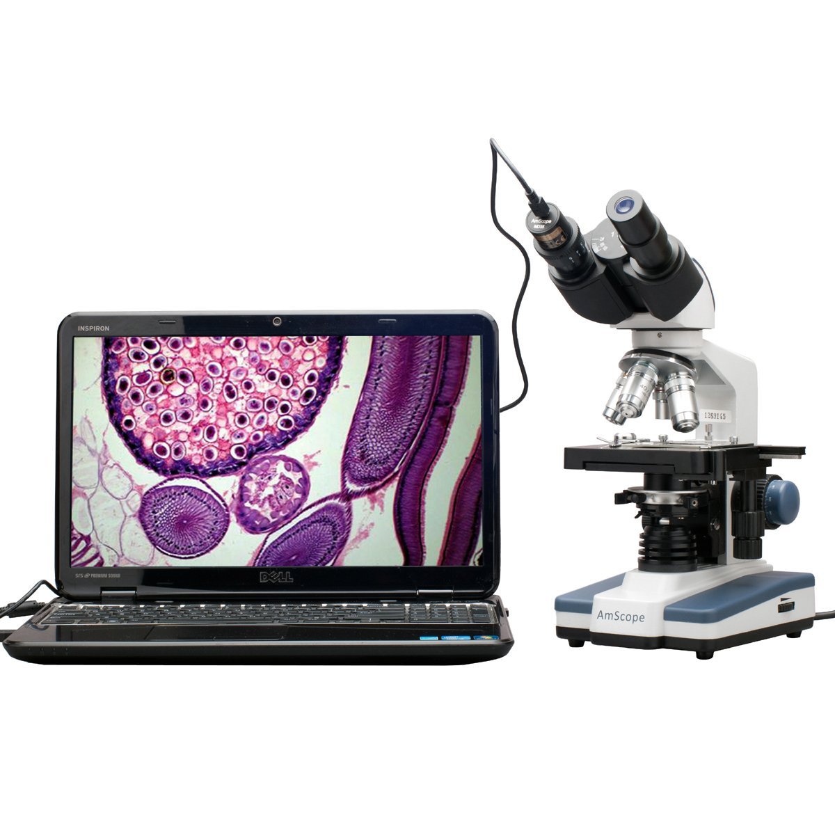 AmScope 40X-2500X LED Digital Binocular Compound Microscope with 3D Stage and 5MP USB Camera by AmScope