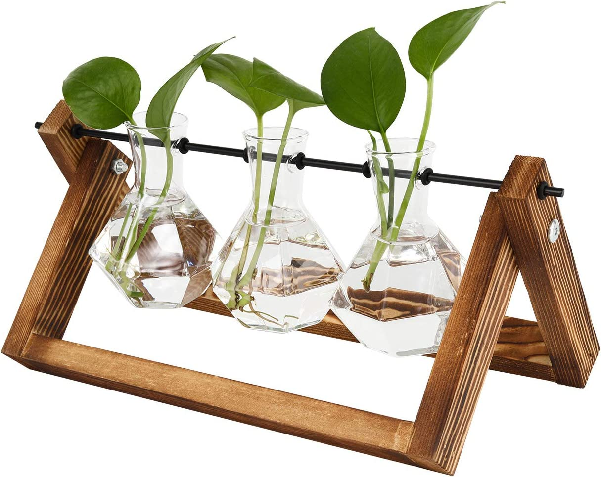 TQVAI Air Planter Terrarium Glass Vase(3 Diamond Glass Vase) with Retro Wooden Stand and Metal Swivel Holder Cute Air Plant Globe - Ideal for Home Office Decoration