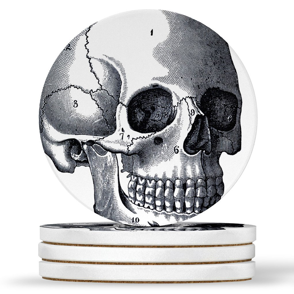 AK Wall Art Vintage Anatomy Skull Design - Round Coasters, Natural Sandstone - Set of 4