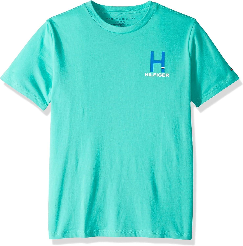 Tommy Hilfiger Boys Matt Solid Tee Shirt