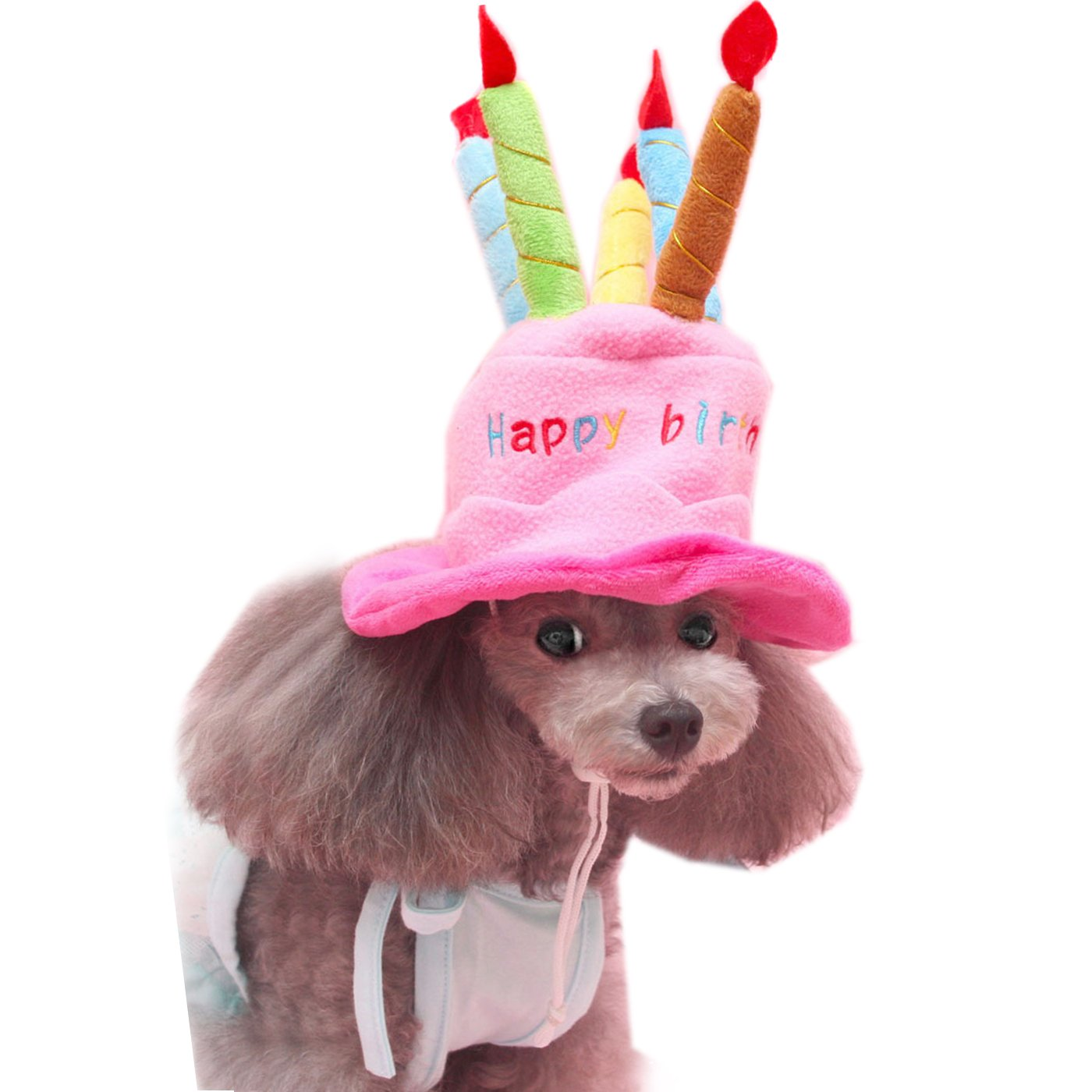Alfie Pet by Petoga Couture - Pattie Birthday Hat Party Costume (for Small Dogs & Cats) - Color: Pink