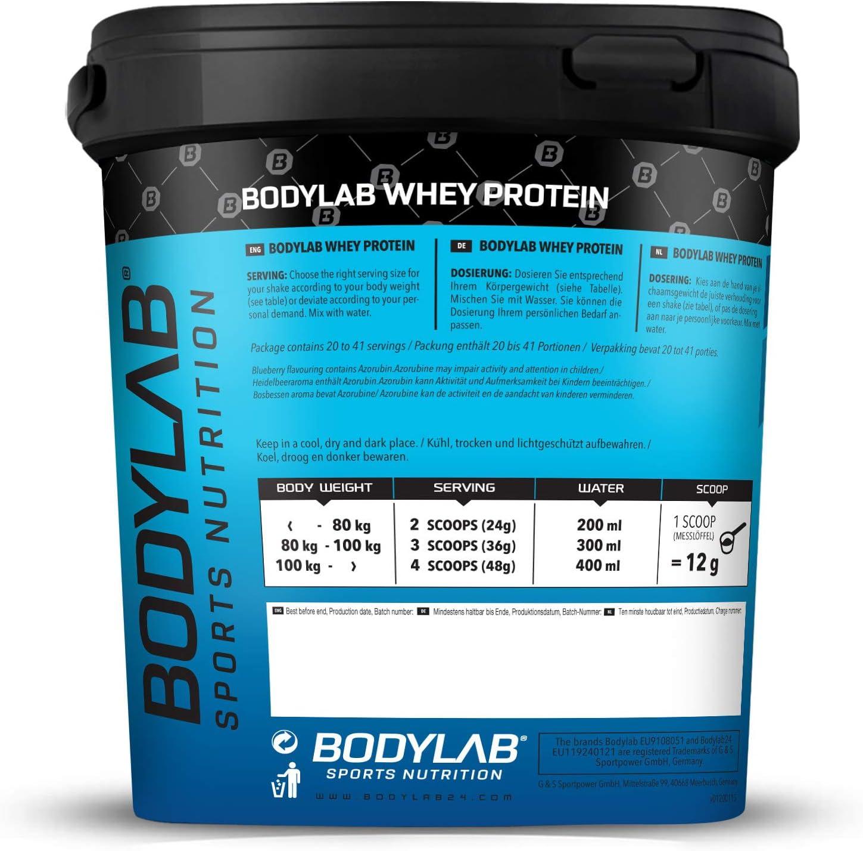 Bodylab24 Proteína Whey 1kg   Proteína de suero en polvo para ...
