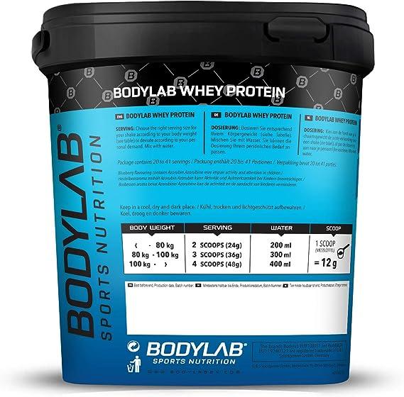 Bodylab24 Proteína Whey 1kg | Proteína de suero en polvo para antes y después del entrenamiento | Para batido de proteínas para masa muscular | 80% ...