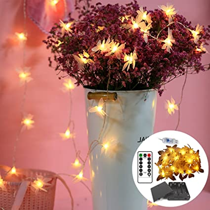 Amazon.com : RanDengTaiZi 2\'Pack Warm White Butterfly Lights ...