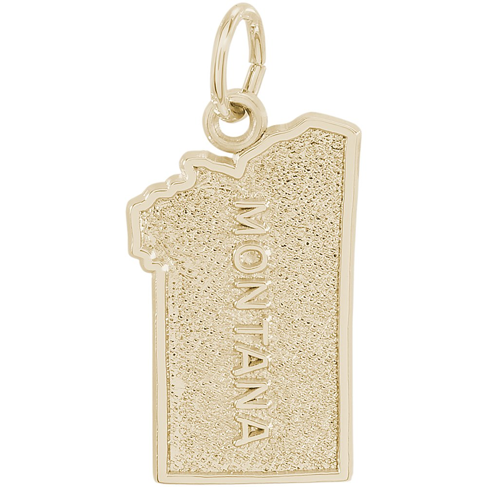 Rembrandt Charms Two-Tone Sterling Silver Montana Charm on a Sterling Silver 16 Box or Curb Chain Necklace 18 or 20 inch Rope