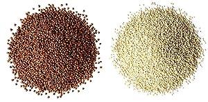 Organic Quinoa Bundle - Organic Red Quinoa, 20 Pounds and, Organic Royal White Quinoa 20 Pounds - Non-GMO, Kosher, Vegan